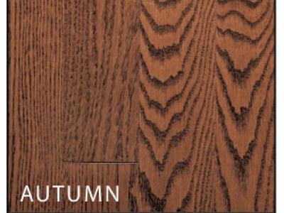 redoak-autumn-lg